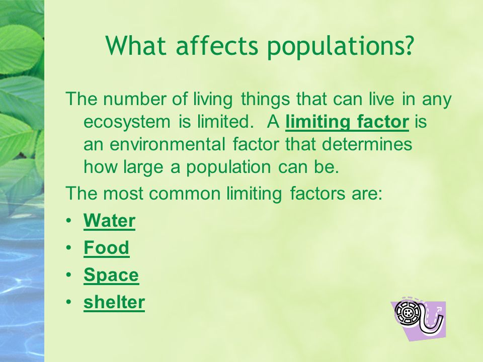What affects populations.The number of living things that can live in any ecosystem is limited.