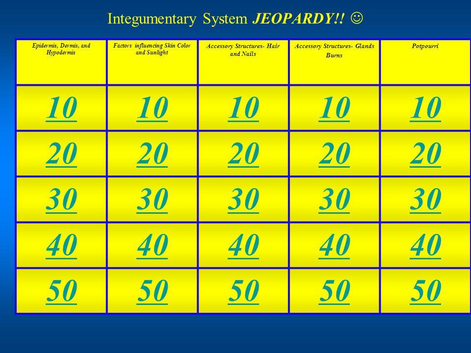 Integumentary System JEOPARDY!.