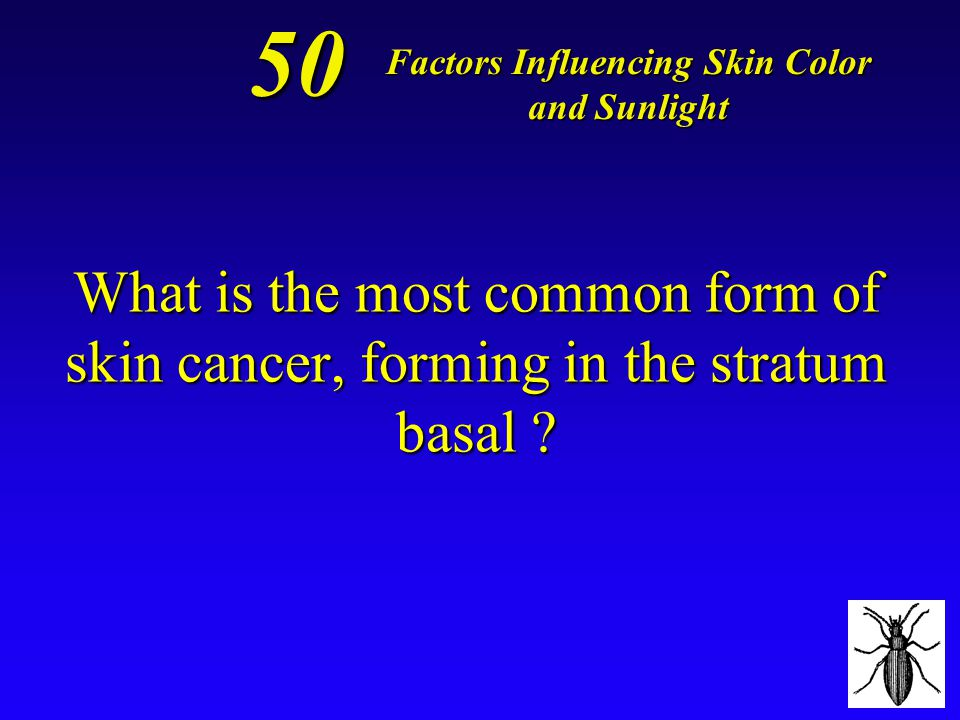 *cyanosis--- skin turns pale or even blue-ish! 40 Factors Influencing Skin Color and Sunlight