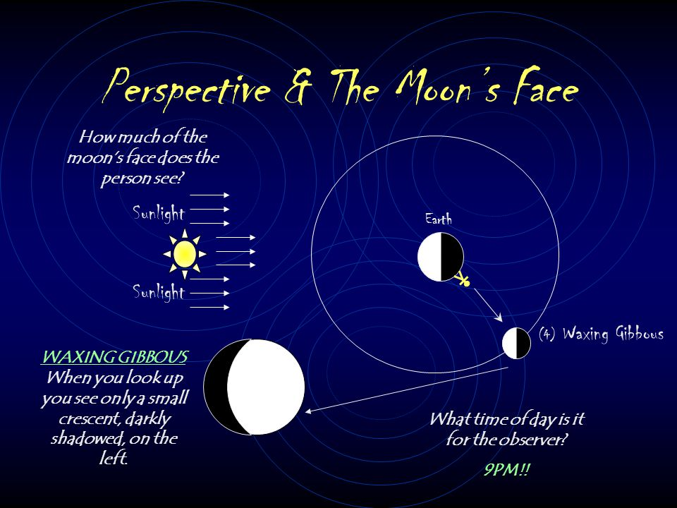 Perspective & The Moon's Face Sunlight Earth (3) First Quarter How much of the moon's face does the person see? What time of day is it for the observe