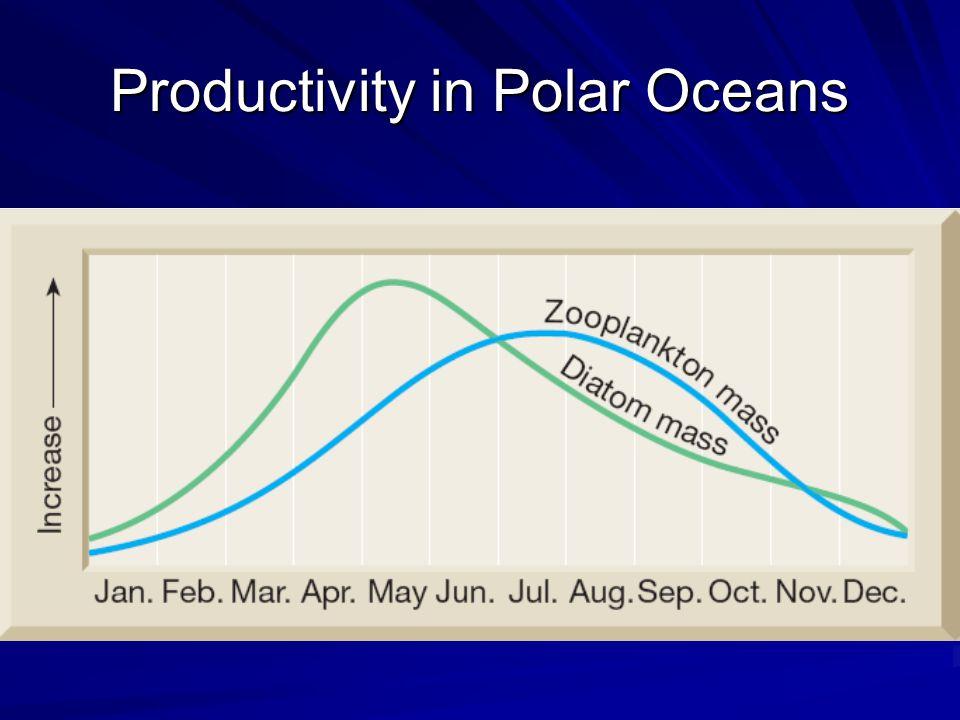 Productivity in Polar Oceans