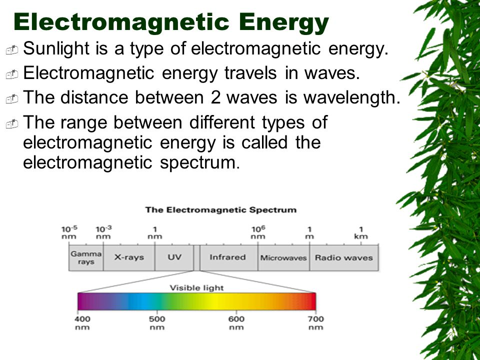 Electromagnetic Energy  Sunlight is a type of electromagnetic energy.