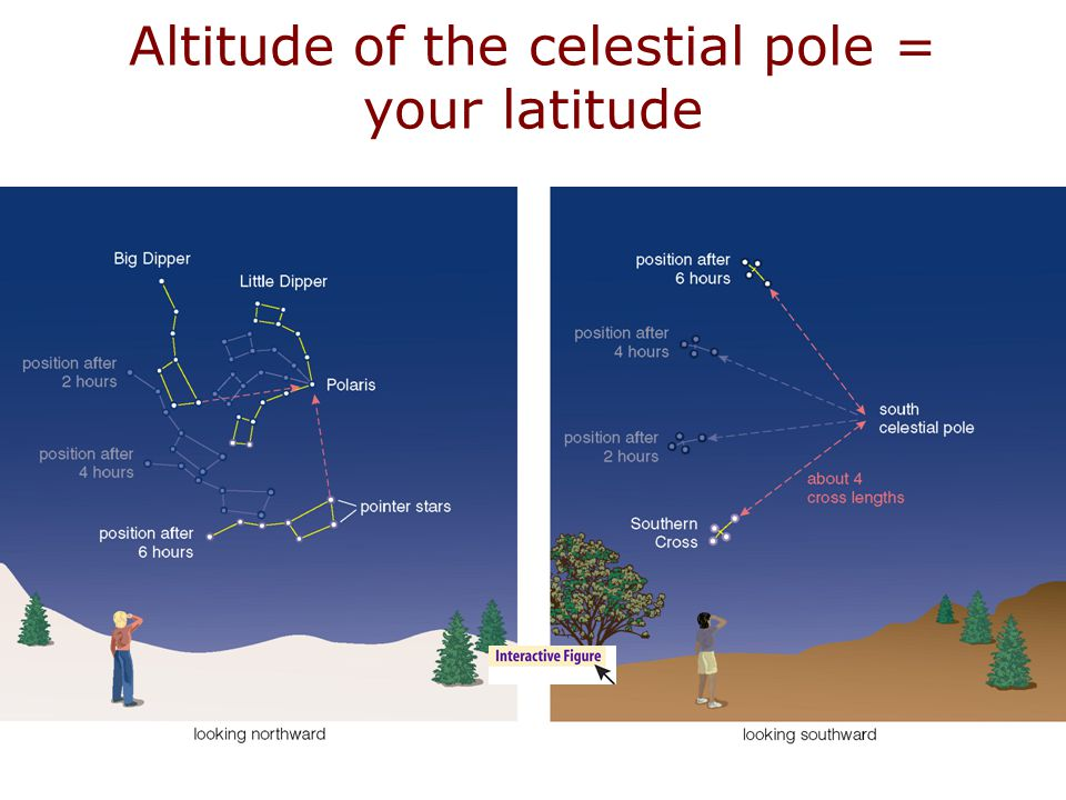 The North Star (Polaris) is 50° above your horizon, due north.
