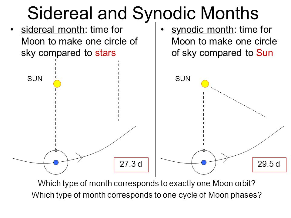 Sidereal and Synodic Months SUN synodic month: time for Moon to make one circle of sky compared to Sun sidereal month: time for Moon to make one circl