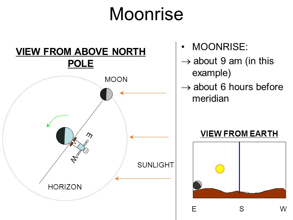 Moonrise MOONRISE:  about 9 am (in this example)  about 6 hours before meridian VIEW FROM ABOVE NORTH POLE SUNLIGHT MOON HORIZON E W EWS VIEW FROM EARTH