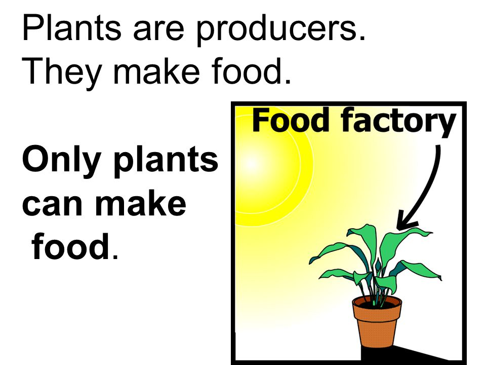 Plants are producers. They make food. Only plants can make food.