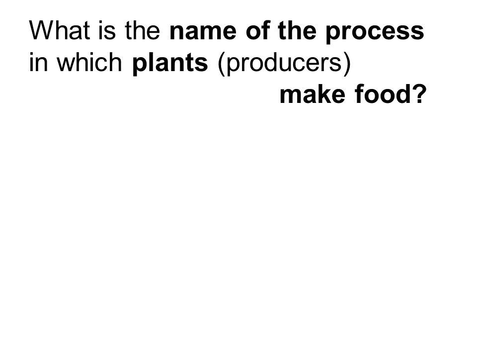 Review: What is the name of the process in which plants (producers) make food?