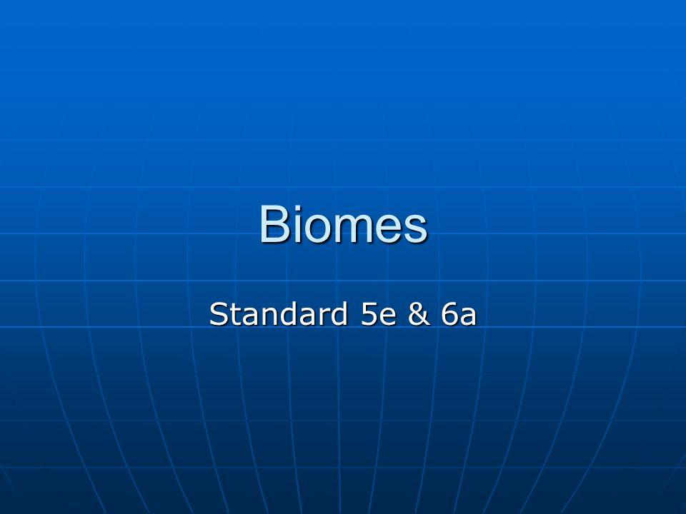 Biomes Standard 5e & 6a