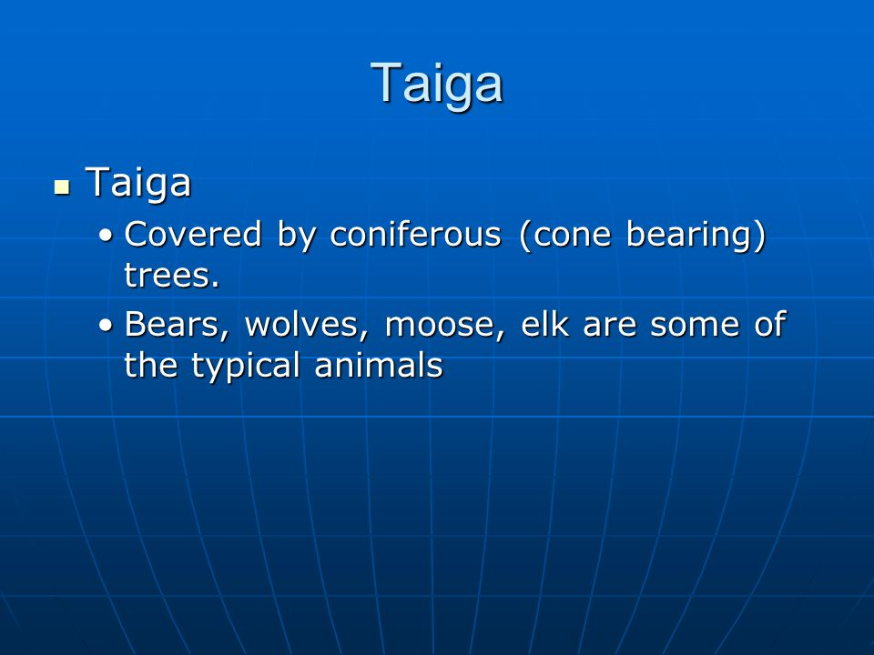 Taiga Taiga Taiga Covered by coniferous (cone bearing) trees.Covered by coniferous (cone bearing) trees.