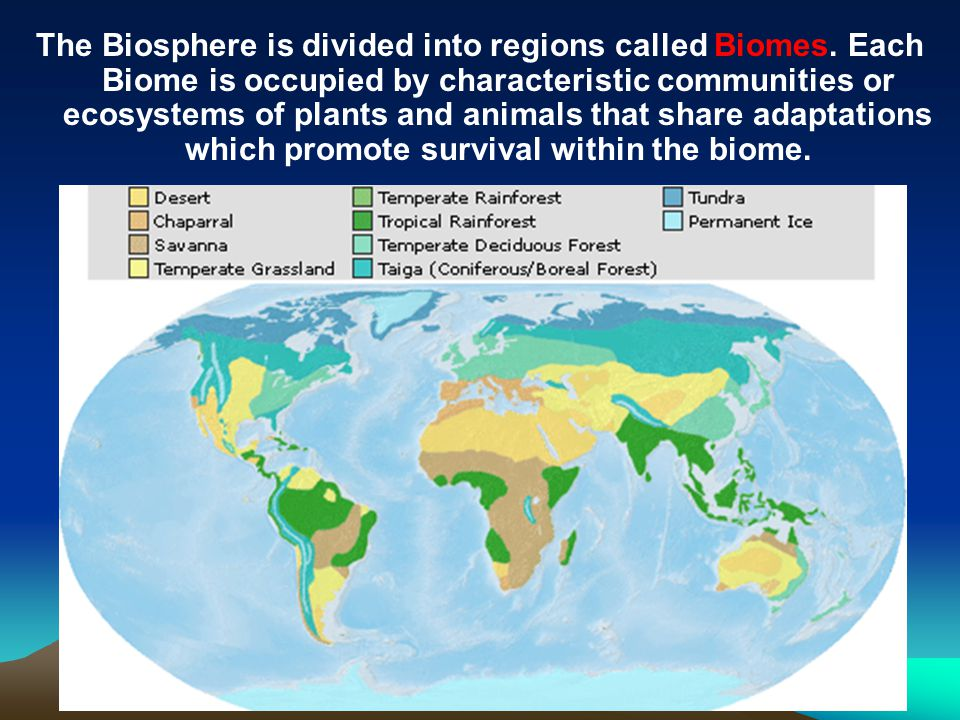 The Biosphere is divided into regions called Biomes. Each Biome is occupied by characteristic communities or ecosystems of plants and animals that sha