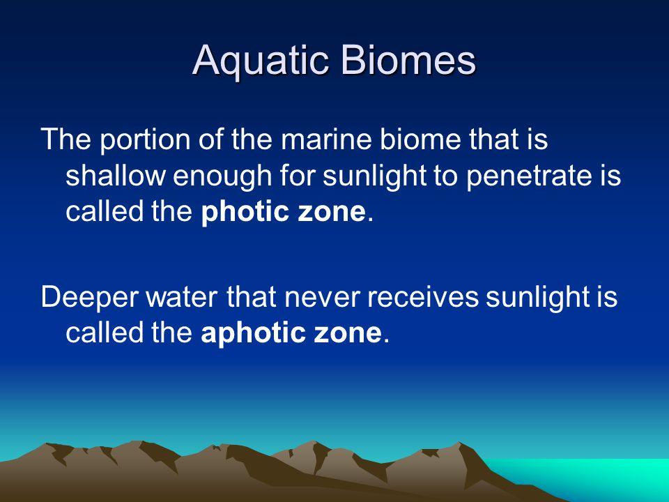 Aquatic Biomes The portion of the marine biome that is shallow enough for sunlight to penetrate is called the photic zone. Deeper water that never rec