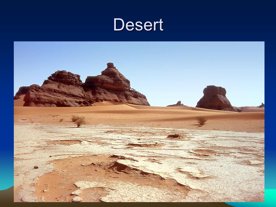Desert Desert- an arid region with sparse to almost nonexistent plant life. Deserts usually get less than 25 cm of precipitation annually. Desert plan
