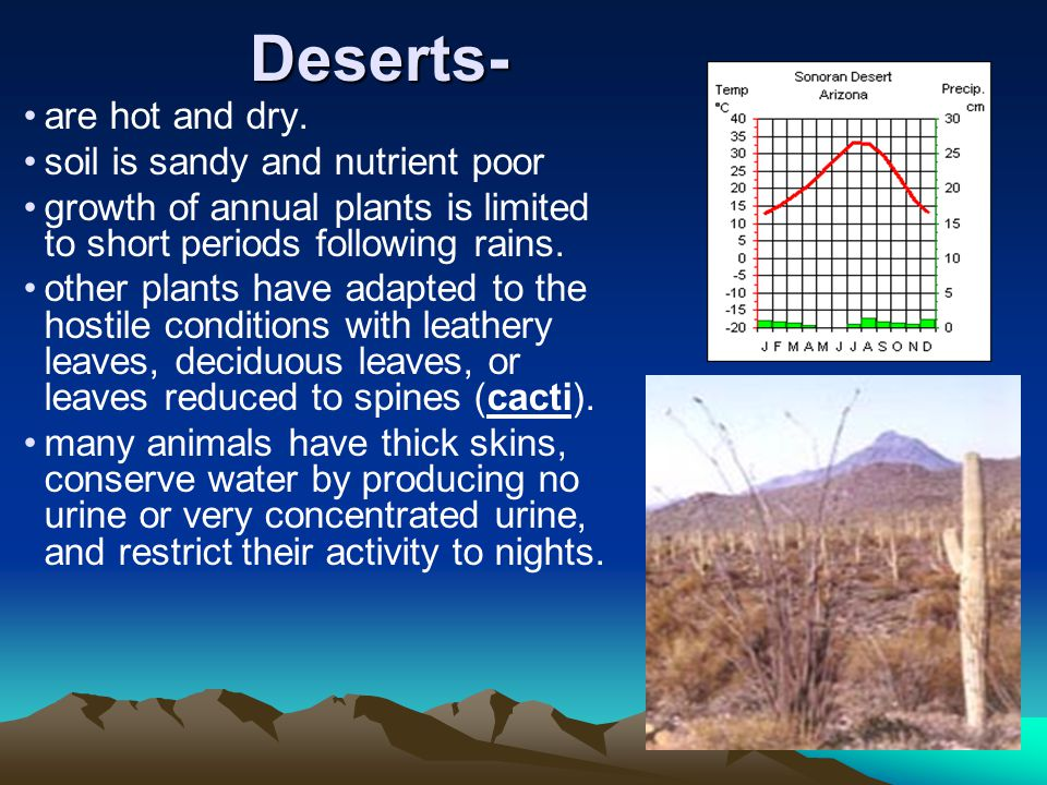 Deserts- are hot and dry.