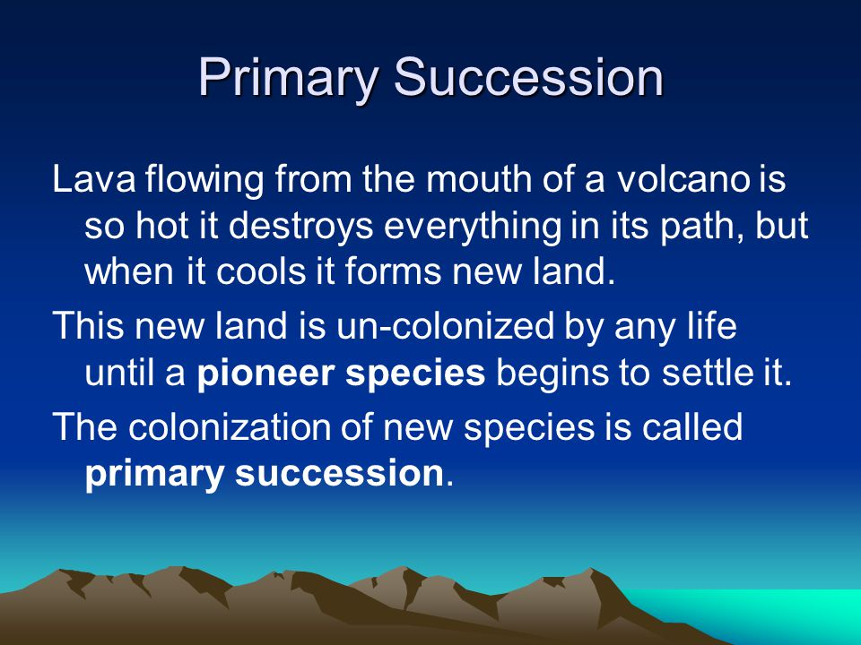 Primary Succession Lava flowing from the mouth of a volcano is so hot it destroys everything in its path, but when it cools it forms new land.