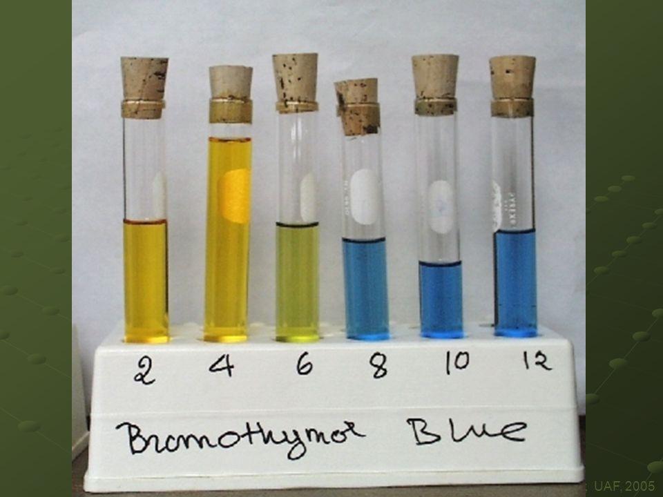 Supramolecular Chemistry, UAF, 2005