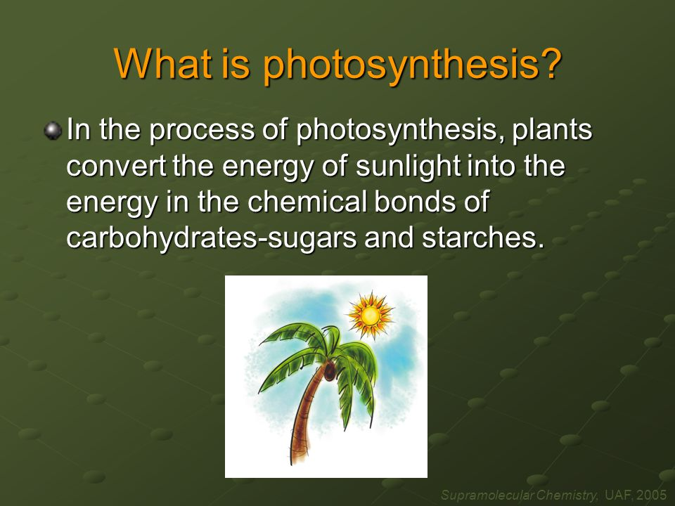 Supramolecular Chemistry, UAF, 2005 What is photosynthesis.