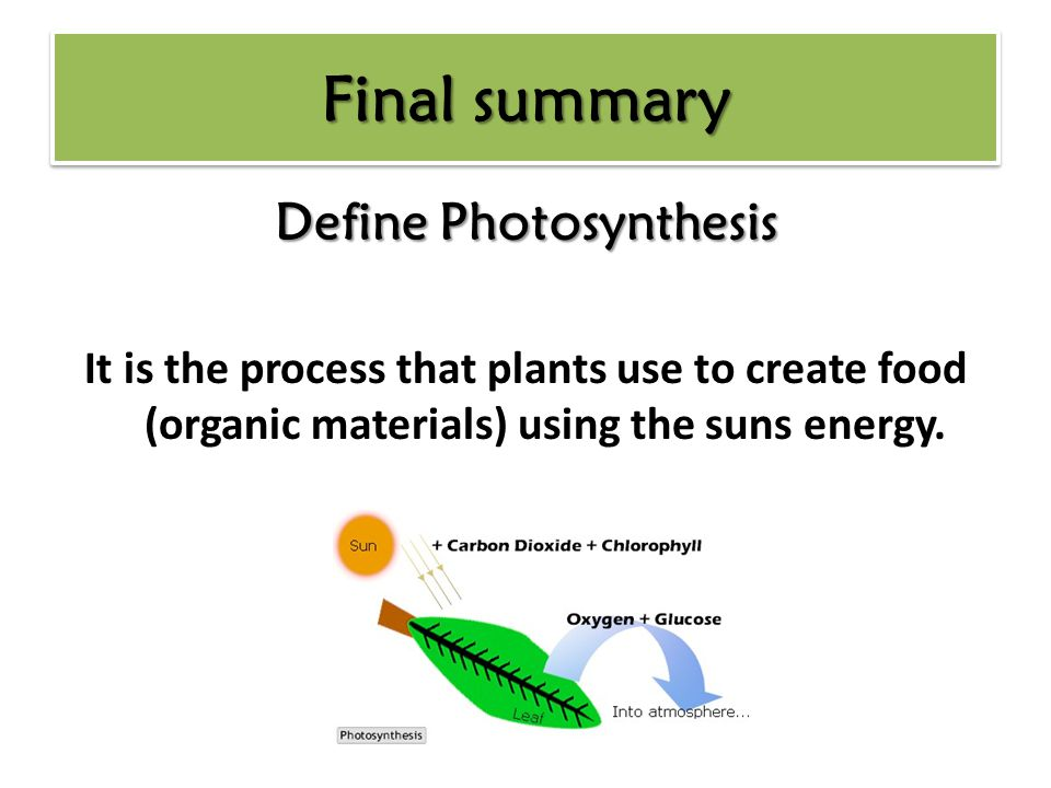 Define Photosynthesis It is the process that plants use to create food (organic materials) using the suns energy.