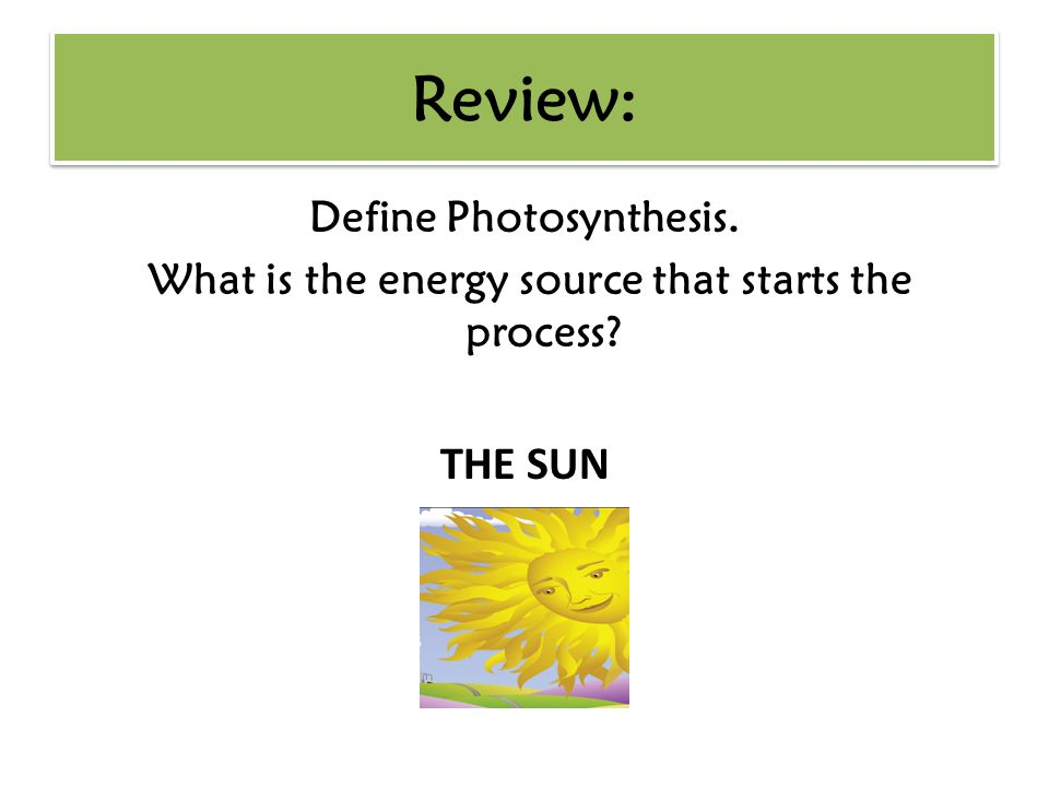 Define Photosynthesis. What is the energy source that starts the process? THE SUN