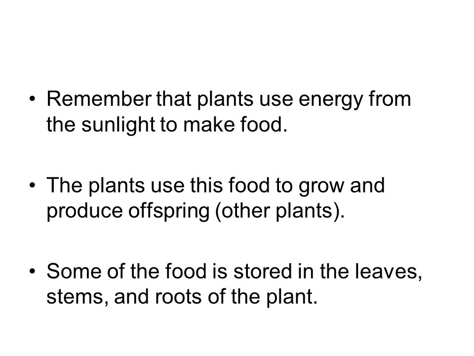 Remember that plants use energy from the sunlight to make food.