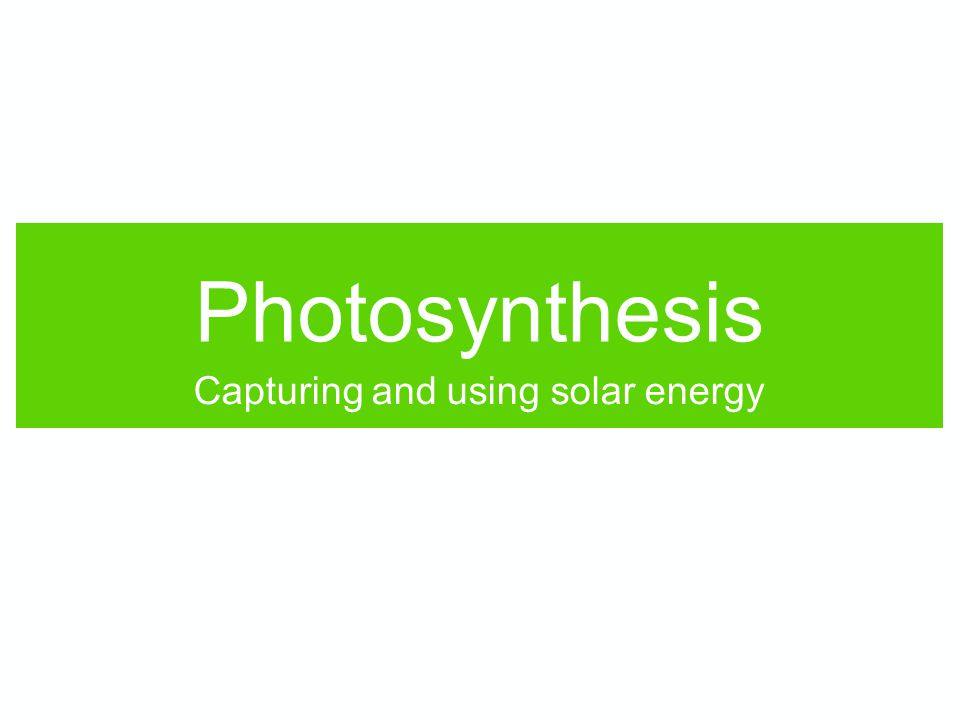Photosynthesis Capturing and using solar energy