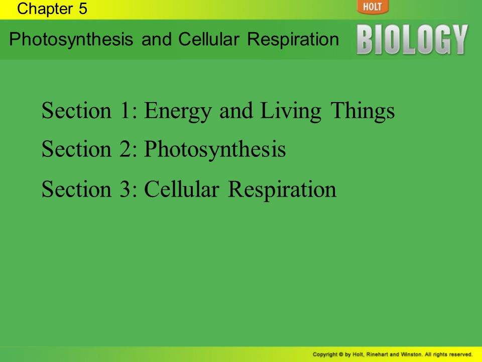 Chapter 5 Photosynthesis and Cellular Respiration Section 1: Energy and Living Things Section 2: Photosynthesis Section 3: Cellular Respiration