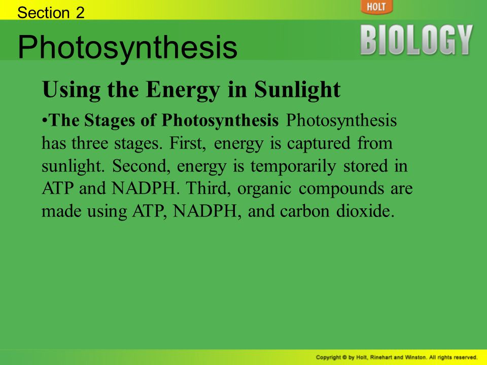 Section 2 Photosynthesis Stage One: Absorption of Light Energy Pigments Pigments, such as chlorophyll, absorb light energy during photosynthesis.