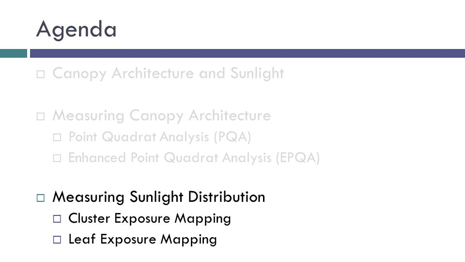 Agenda  Canopy Architecture and Sunlight  Measuring Canopy Architecture  Point Quadrat Analysis (PQA)  Enhanced Point Quadrat Analysis (EPQA)  Measuring Sunlight Distribution  Cluster Exposure Mapping  Leaf Exposure Mapping