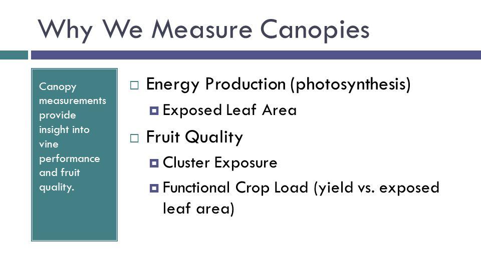 PQA: Standard Analysis Metrics VigorLight Environment Metric % Gaps (PG) Leaf Layer Num (LLN) % Interior Leaves (PIL) % Interior Clusters (PIC) Formula Result33.33355.55100 20 cm40 cm60 cm L L C L LGL L L L C L Sample Dataset