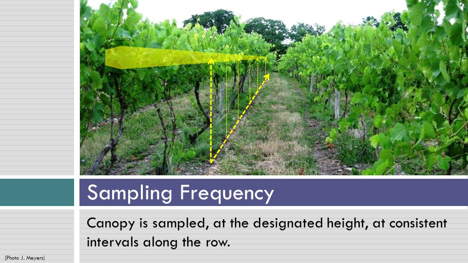 At each sampling location, data is collected from one outer edge of the other outer edge.