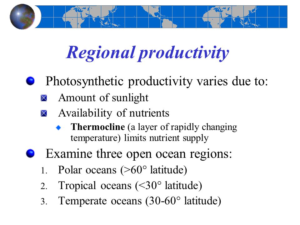 Regional productivity Photosynthetic productivity varies due to: Amount of sunlight Availability of nutrients Thermocline (a layer of rapidly changing