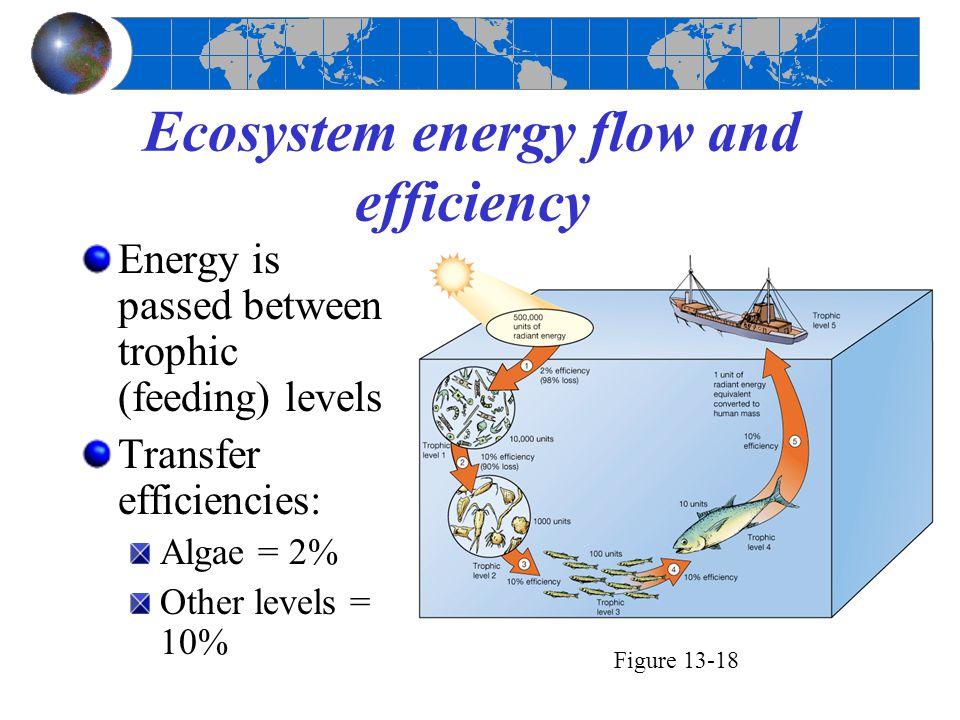 Ecosystem energy flow and efficiency Energy is passed between trophic (feeding) levels Transfer efficiencies: Algae = 2% Other levels = 10% Figure 13-