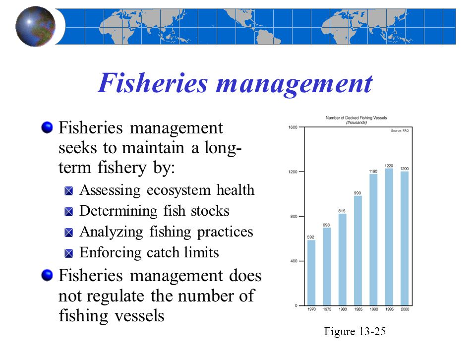 Fisheries management Fisheries management seeks to maintain a long- term fishery by: Assessing ecosystem health Determining fish stocks Analyzing fish