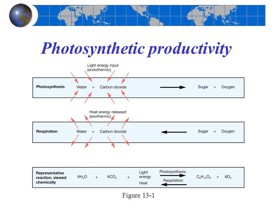 Photosynthetic productivity Figure 13-1
