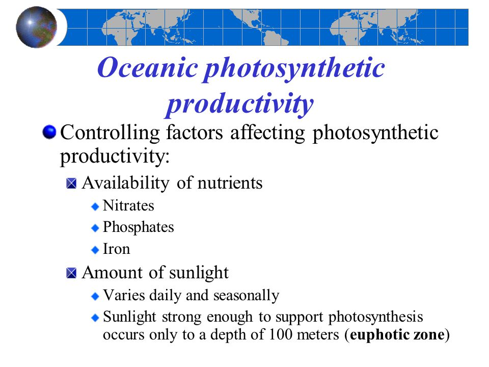 Oceanic photosynthetic productivity Controlling factors affecting photosynthetic productivity: Availability of nutrients Nitrates Phosphates Iron Amou