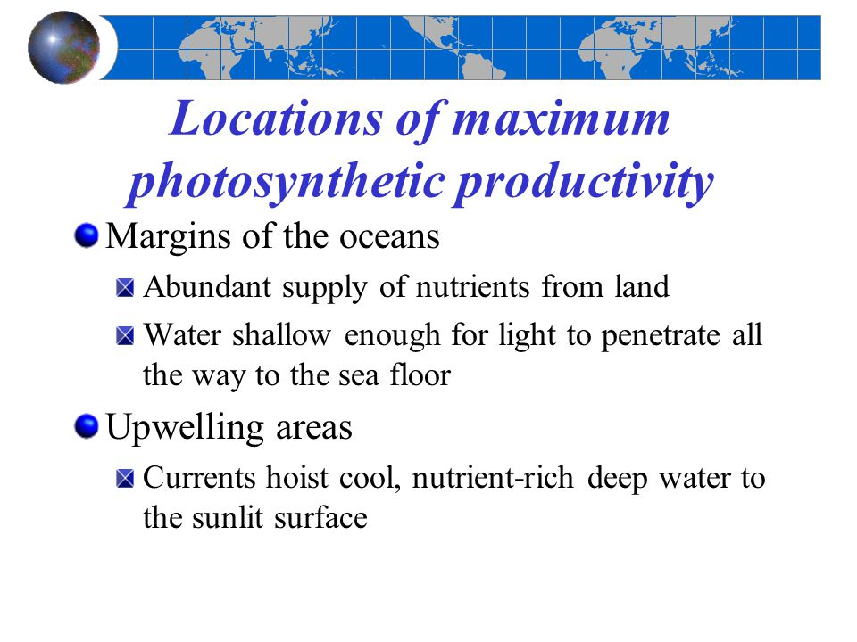 Locations of maximum photosynthetic productivity Margins of the oceans Abundant supply of nutrients from land Water shallow enough for light to penetr