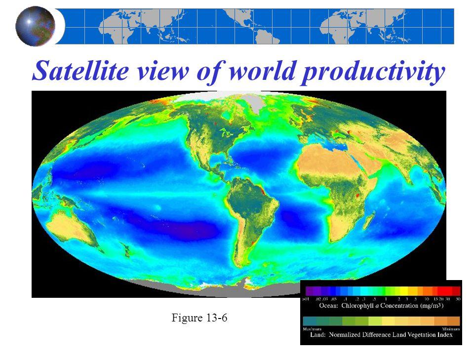 Satellite view of world productivity Figure 13-6