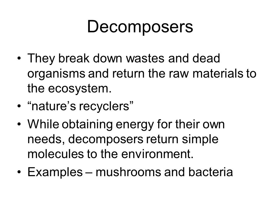 "Decomposers They break down wastes and dead organisms and return the raw materials to the ecosystem. ""nature's recyclers"" While obtaining energy for t"