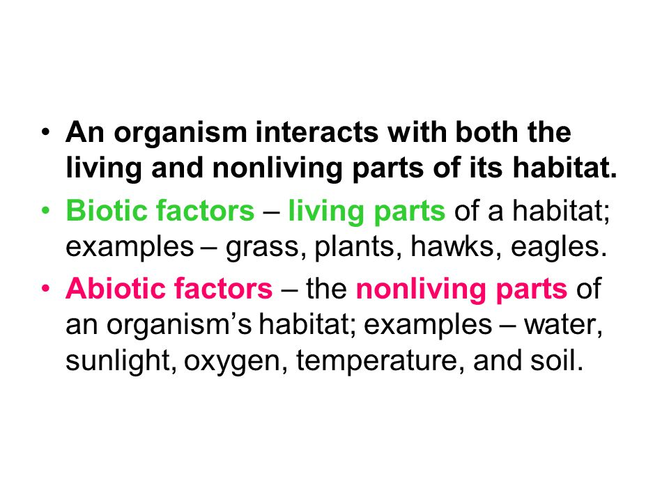 Abiotic Factors 1.Water – all living things require water to carry out their life processes; makes up a large part of the bodies of most organisms; human bodies – 65% water; plants and algae need water with sunlight and carbon dioxide to make their own food by photosynthesis.