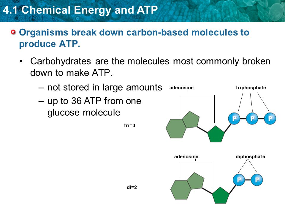 4.1 Chemical Energy and ATP The equation for the overall process is: C 6 H 12 O 6 + 6O 2  6CO 2 + 6H 2 O The reactants in photosynthesis are the same as the products of cellular respiration.