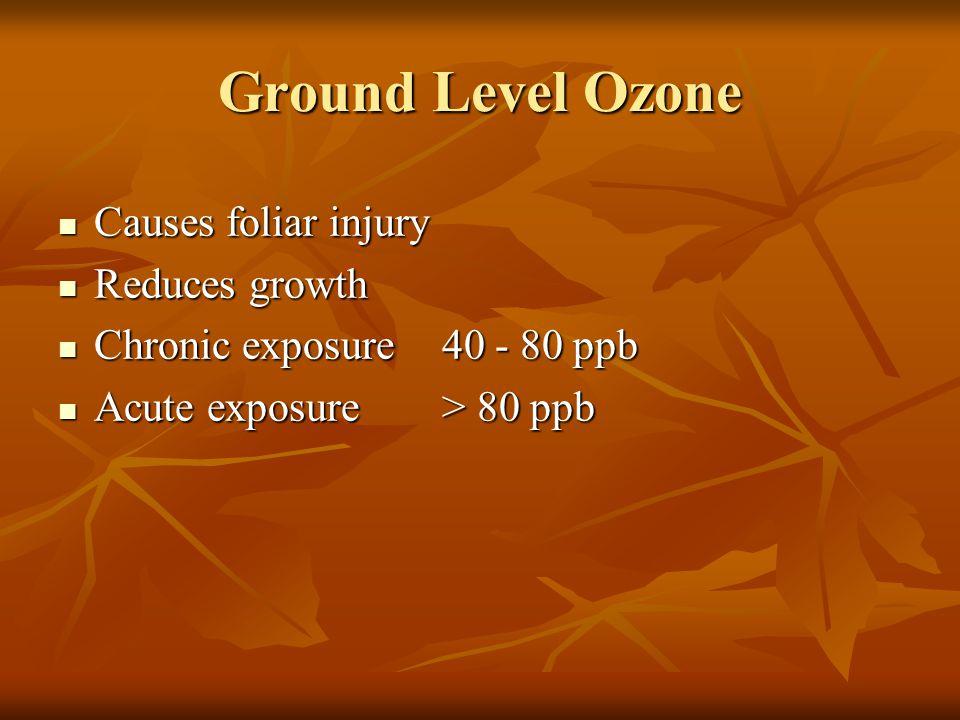 Ground Level Ozone Causes foliar injury Causes foliar injury Reduces growth Reduces growth Chronic exposure 40 - 80 ppb Chronic exposure 40 - 80 ppb Acute exposure > 80 ppb Acute exposure > 80 ppb