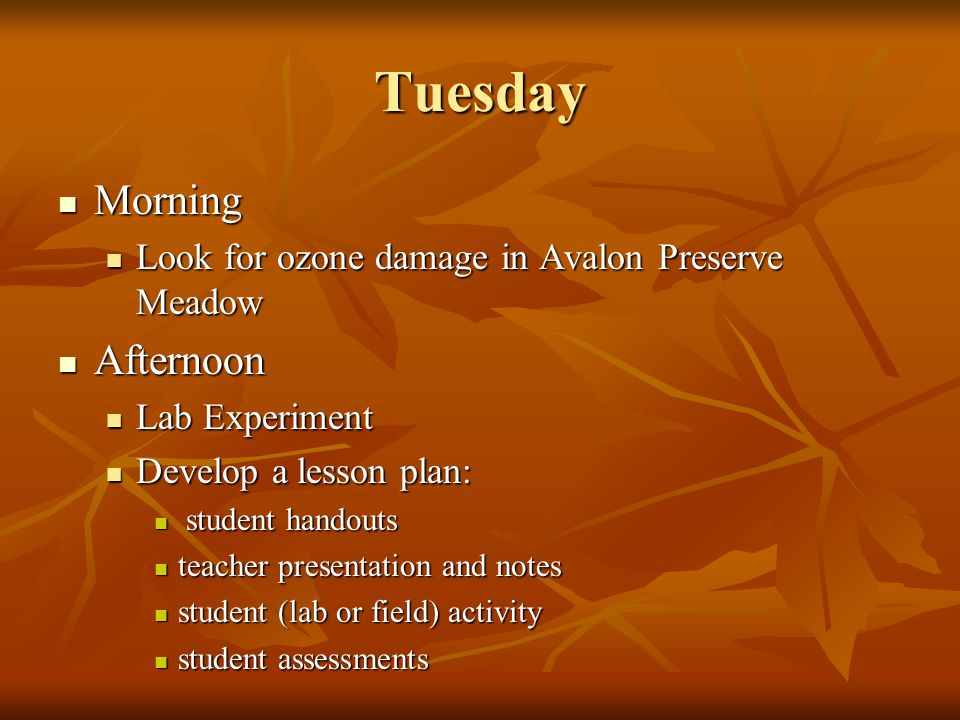 Tuesday Morning Morning Look for ozone damage in Avalon Preserve Meadow Look for ozone damage in Avalon Preserve Meadow Afternoon Afternoon Lab Experi