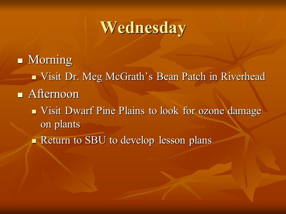 Wednesday Morning Morning Visit Dr. Meg McGrath's Bean Patch in Riverhead Visit Dr.
