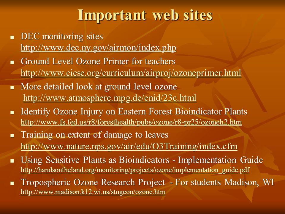 Important web sites DEC monitoring sites http://www.dec.ny.gov/airmon/index.php DEC monitoring sites http://www.dec.ny.gov/airmon/index.php Ground Lev