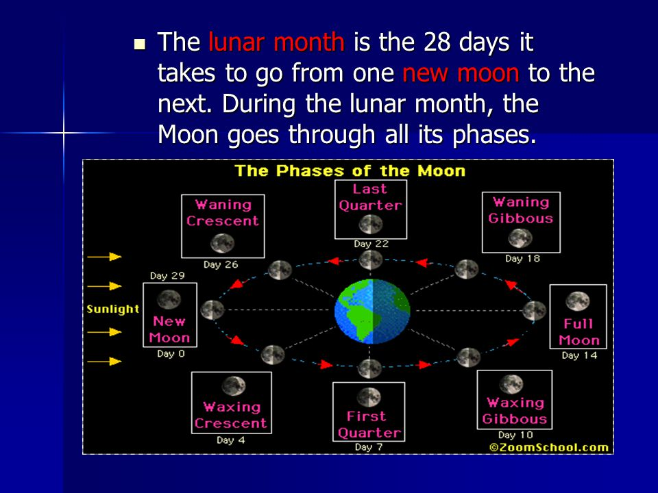 The lunar month is the 28 days it takes to go from one new moon to the next. During the lunar month, the Moon goes through all its phases. The lunar m