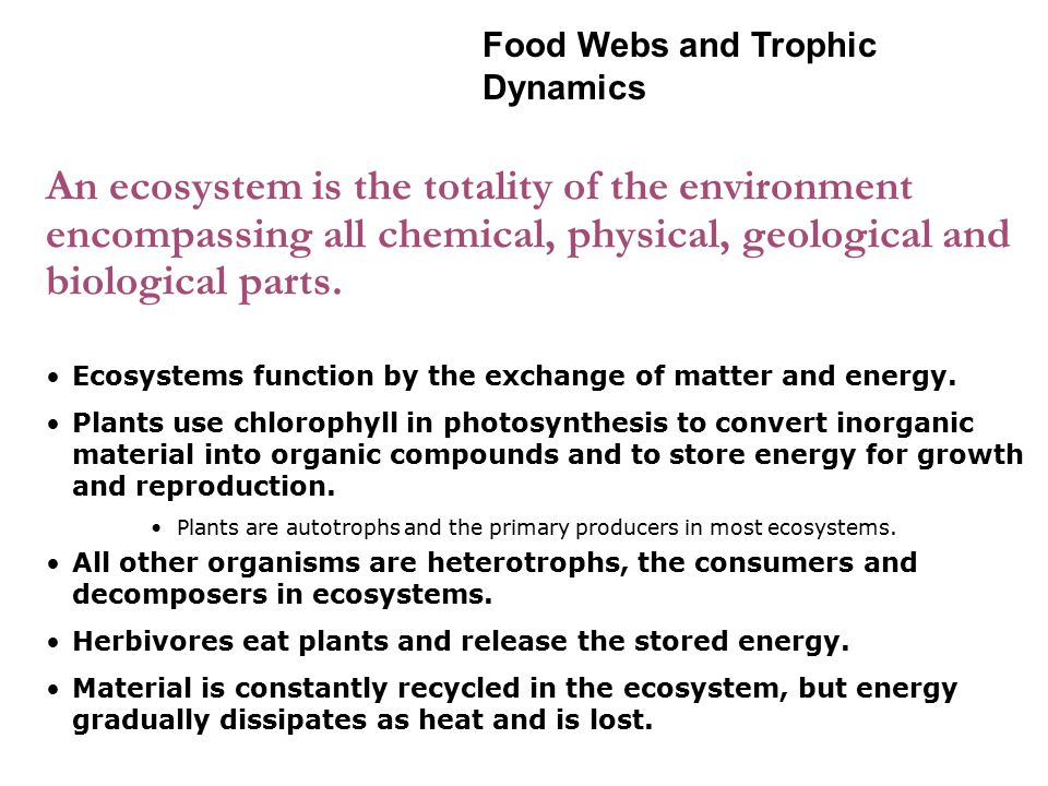 Food chains transfer energy from one trophic level to another.