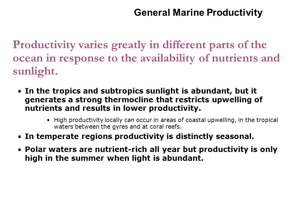 Productivity varies greatly in different parts of the ocean in response to the availability of nutrients and sunlight. In the tropics and subtropics s