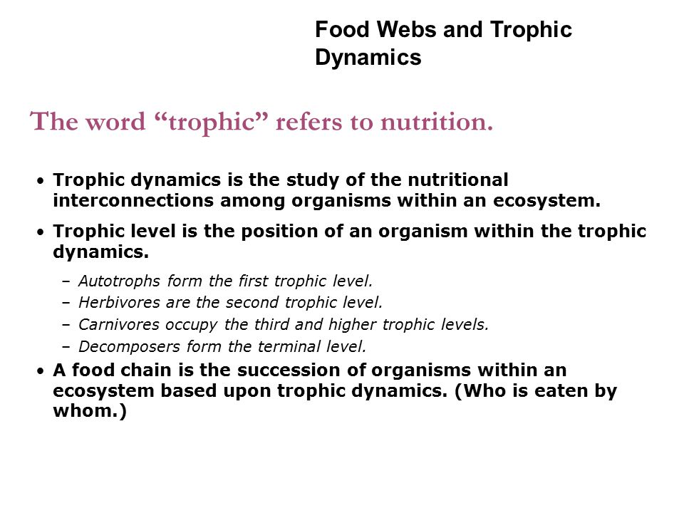 "The word ""trophic"" refers to nutrition. Trophic dynamics is the study of the nutritional interconnections among organisms within an ecosystem. Trophic"
