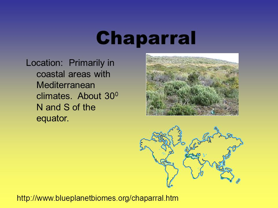 Chaparral Location: Primarily in coastal areas with Mediterranean climates.
