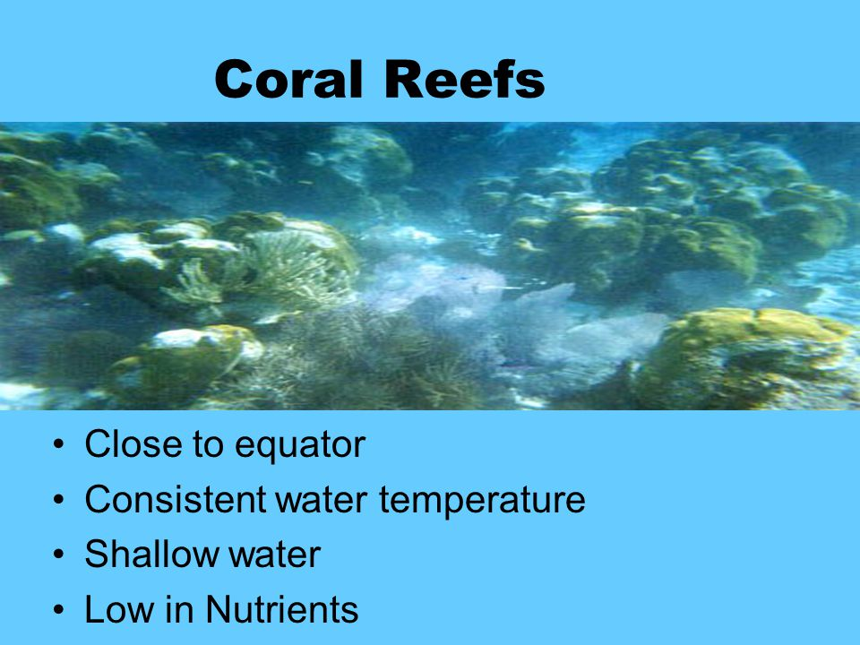 Coral Reefs Close to equator Consistent water temperature Shallow water Low in Nutrients