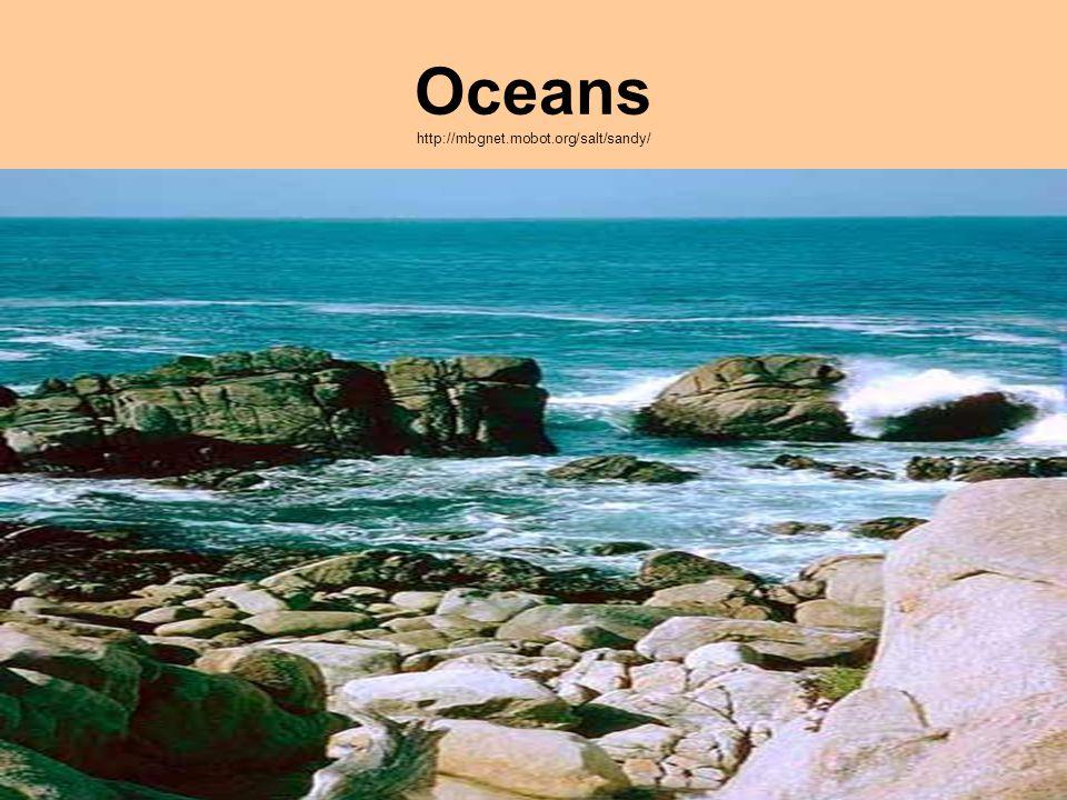 Oceans http://mbgnet.mobot.org/salt/sandy/